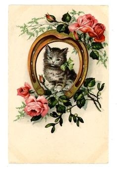 vintage cat postcard lovely grey tabby cat kitten in horseshoe w big pink roses