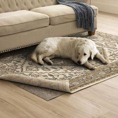 Mohawk Home Pet Friendly Dual-Surface Rug Pad – Grey X Gray - conceptual. Luxury Vinyl, Red Rugs, Carpet, Bloomsbury Market, Rug Pad, Rugs, Mohawk Home, Rugs On Carpet, Karastan