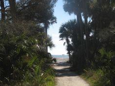Botany Bay Plantation, Edisto Island, South Carolina Lowcountry