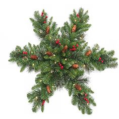 awesome  32Diameter for indoor or covered outdoor use Pre-lit with 35 warm white LED lights, energy efficient and long lasting Trimmed with red berries, Pine cones, glitter and 132 branch tips  #Green #NationalChristmasProductsInc  https://www.silkyflowerstore.com/product/national-tree-company-32-in-crestwood-silver-bristle-spruce-snowflake-with-white-battery-operated-leds-and-timer/  #Green #NationalChristmasProductsInc