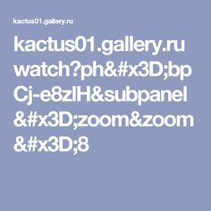 kactus01.gallery.ru watch?ph=bpCj-e8zlH&subpanel=zoom&zoom=8