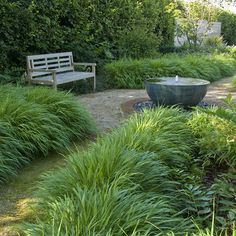 Accessible Family Garden Design in West Sussex with bubbling water feature, Hakonechloa grasses and bench Glass Garden, Water Garden, Modern Water Feature, Family Garden, Garden Signs, Ornamental Grasses, Garden Beds, Water Features, Amazing Gardens