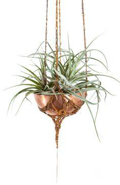 Mini Hanging Planter with hand spun copper or brass bowl / Modern Planter / Plant Hanger / Air Plant Hanger/ Minimalist Home Decor
