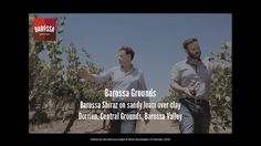 Barossa Grounds Project - The Central Grounds, feat. Tim Malone & Steve Frost from Wolf Blass Wines.