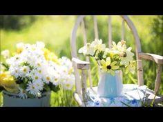 Markku Aro - Anna kaikkien kukkien kukkia