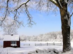 Booking Your Winter Getaway: The Perils And Pitfalls - eTramping.com