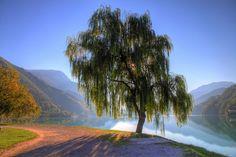 lago di ledro - trentino by alessandro isnenghi  - http://www.visittrentino.it/en/cosa_fare/da_vedere/dettagli/dett/lago-di-ledro