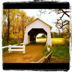 The Irish Bend Covered Bridge in Corvallis, Oregon.  Runners sighted here often!