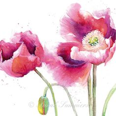 Poppies in the wind 8 x 8 Art Print by Sarah por sarahsummers, £10.00