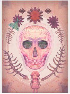 Skull find
