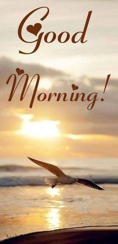 morgen,alle schon wach ? - http://guten-morgen-bilder.de/bilder/morgenalle-schon-wach-260/