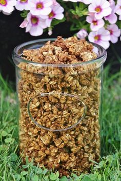 Jordnötsgranola med dadlar is part of Breakfast recipes - Healthy Foods To Eat, Healthy Baking, Healthy Snacks, Vegan Desserts, Raw Food Recipes, Healthy Recipes, Breakfast Time, Breakfast Recipes, Eat Slowly