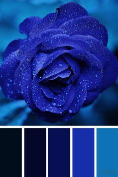 Color palette Shades of Blue Color Inspiration Black Color Palette, Colour Pallette, Inspire Me Home Decor, Blue Pallets, Blue Shades Colors, Best Color Schemes, Midnight Blue Color, Dark Wallpaper, Blue Colour Wallpaper