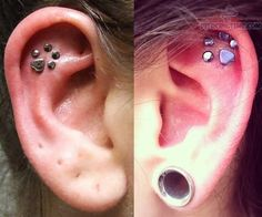 Paw Print shaped Ear Piercing - I really like it but don't want it.
