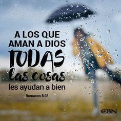 Romanos 8:28 Y sabemos que a los que aman a Dios, todas las cosas les ayudan a bien, esto es, a los que conforme a su propósito son llamados.♔