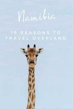 Travelling Namibia Overland - 19 Reasons to Overland Namibia, Namibia pictures and why you should Overland Namibia!