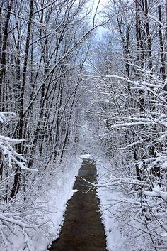 Water-Path, Bavaria, Germany