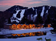 Rustic Inn Creekside Resort and Spa at Jackson Hole Jackson, Wyoming snow sky tree mountainous landforms Winter mountain Nature wilderness weather geological phenomenon season mountain range night evening cloud morning Sunset dusk dawn landscape sunrise Lake ice Forest