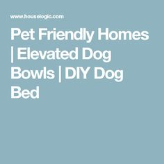 Pet Friendly Homes | Elevated Dog Bowls | DIY Dog Bed