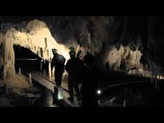 See the trailer for Cave of Forgotten Dreams released on the 25th March 2011 at selected Cineworld Cinemas. Visit http://www.cineworld.com for more info and booking.    Requiring special permission from the French Minister of Culture, world-famous director Werner Herzog set out on a cinematic journey to film deep within the Chauvet Cave in South...