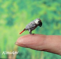 Mini Amerikaanse grijze papegaai  miniatuur van BambinoZoo op Etsy