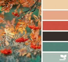 Color Schemes Colour Palettes, Fall Color Palette, Colour Pallette, Color Palate, Color Combos, Orange Palette, Design Seeds, Decoration Palette, Hue Color
