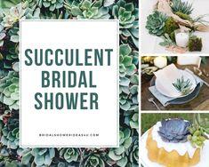 Succulent Bridal Shower Ideas - Bridal Shower Ideas - Themes
