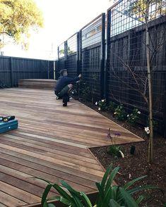 Steel rod pool fence through garden with Podocarpus screening, Jasmine floor & Banksia integrifolia above. Fence Landscaping, Pool Fence, Backyard Fences, Diy Fence, Fence Ideas, Pergola Ideas, Landscape Design, Garden Design, Contemporary Landscape
