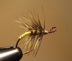 Yellow & Olive Palmered Tenkara Fly Recipe: Olive & Yellow Hook: Any eyeless hook Thread: Olive 8/0 Eye: #2 silk bead cord, brown Abdomen: Yellow turkey biot Thorax: Olive dubbing Hackle: Olive grizzly saddle