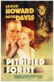 Calificaciones Pagina 28 Zoowoman 1 0 Into The Forest Movie Bette Davis Petrified Forest