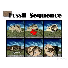 FOSSIL SEQUENCE - A six step sequence board displays the fossil formation of a dinosaur with picture representations. Another sequence board displays the same stages with word explanations. Dashed line pages are provided to allow your student to cut and paste in a variety of ways. - See more at: http://autismeducators.com/fossil-formation-sequence#sthash.eJOa3Nvw.dpuf