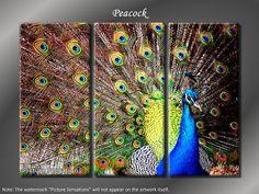 Framed Huge 3 Panel Bird Peacock Giclee Canvas by ModernWallDeco, $99.00