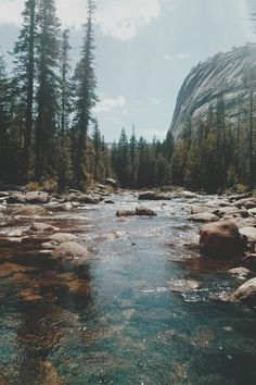 Hermoso!❤ uploaded by Soofi on We Heart It #river #fondos #lake #nature #forest #background #forest #wallpaper #love #water #instafollow #amazing #outdoor #outdoors