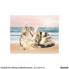 Striped #Cat Sitting on Beach #sunset Oil Painting #Canvas Print