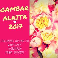 Gambar Alnita 2017  Telp/SMS : 0815-5576-2565 Whatshapp : 0815-5576-2565