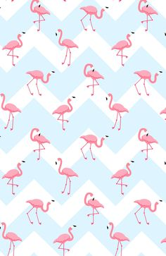 Wallpaper onehouse decor в 2019 г. Wallpaper Chevron, Wallpaper Pastel, Flamingo Wallpaper, Cute Wallpaper For Phone, Wallpaper Iphone Disney, Tumblr Wallpaper, Screen Wallpaper, Wallpaper Backgrounds, Aesthetic Iphone Wallpaper