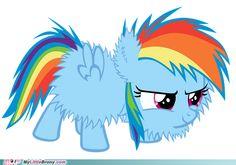 Fluffy Rainbow Dash