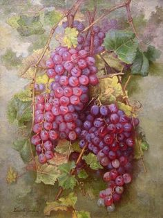 """""""Grapes"""" by Elizabeth Borglum California Late - early century Fruit Plants, Painting Still Life, Fruit Art, Stained Glass Art, Fruits And Veggies, Vintage Images, Grape Vines, Printable Vintage, Still Life"""