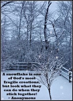 A snowflake is one of God's most fragile creations, but look what they can do when they stick together! ~ Anonymous