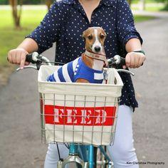 Easy upcycled bike basket