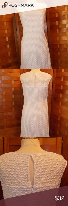 ADRIANNA PAPELL WHITE LACE DRESS SZ 10 EUC WHITE LACE OVERLAY DRESS STRETCHY FABRIC BACK ZIP KEYHOLE BACK DETAIL A LINE SKIRT NO HOLES OR STAINS EUC LADIES SIZE 10 BY ADRIANNA PAPELL. Adrianna Papell Dresses Midi