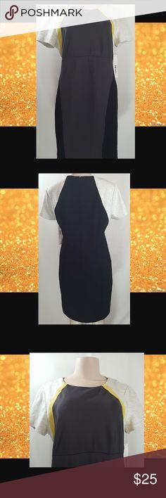 NWT DKNYC SIZE 16 COLOR BLOCK DRESS DKNYC Size 16 Color Block Dress NWT DKNYC Dresses