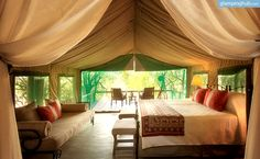 Safari Tent Camping in South Africa   Luxury Camping in South Africa