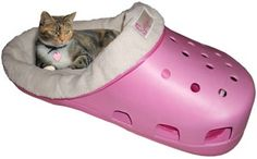 Wish I had the room for this.  My little chihuahua would love it.  Shoe Bed  CROC