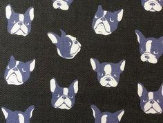 blue french bull dogs on black web