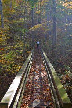 12 Incredible Hikes Under 5 Miles Everyone In Delaware Should Take