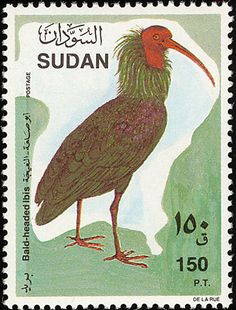 Northern Bald Ibis stamps - mainly images - gallery format