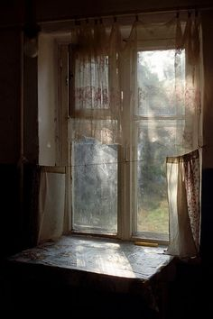 Window with lace curtains. Afternoon