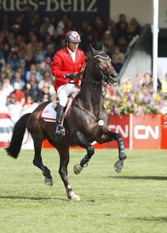 Eric Lamaze and Hickstead in the 2009 CN International Grand Prix. Hickstead... A wonderful horse and such a tragic end