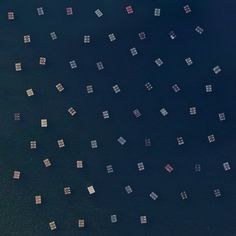 7/13/2015 Mussel nurseries Galicia, Spain 42.576312, -8.859047 Mussel cultivation in the Ría de Arousa saline estuary off the coast of Galicia, Spain is the highest in the world. Floating rafts contain the nurseries where the mollusks grow on ropes until they are large enough to harvest. Mussel production has thrived here because there is an usually high concentration of phytoplankton in the water, providing the mussels with a protein-rich diet.